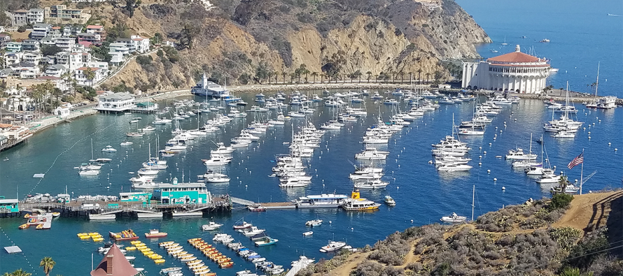 Private Charter to Catalina Island, Avalon, CA
